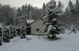 Casă de vacanță Anghelești, Casa Elena