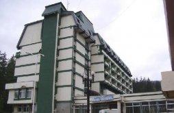 Hotel Poiana Negrii, Hotel Bradul