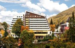 Hotel Sinaia, Hotel International