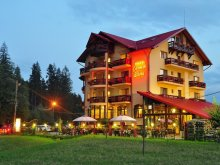 Accommodation Mitoc (Leorda), Carmen Silvae Guesthouse
