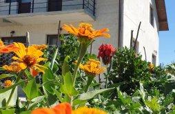Cazare Căprioara cu Tichete de vacanță / Card de vacanță, Pensiunea Angheliki
