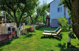 Guesthouse Eforie Nord, Casa cu Foisor Guesthouse
