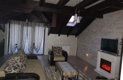 Accommodation Păltinoasa, Casa Roberto Guesthouse