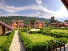 Villa Sibiciu de Sus, Tichet de vacanță, Fortul Doftanei Vila