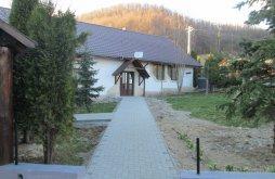 Villa Vérvölgy (Verveghiu), Steaua Nordului Villa