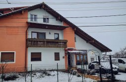 Apartman Rontău, Hotea Villa