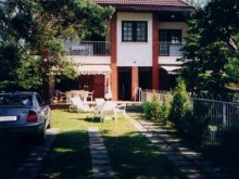 Accommodation Balatoncsicsó, Sunflower Apartment 2