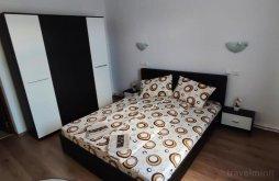 Accommodation Clopotiva, Narcisa Guesthouse