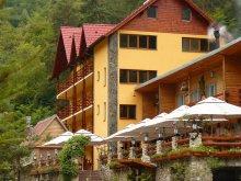 Accommodation Sibiu county, Curmătura Ștezii Guesthouse