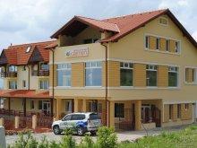Accommodation Ocna Sibiului, Carmen Guesthouse