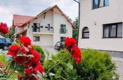 Accommodation Coștiui, Baias Agrotourism B&B