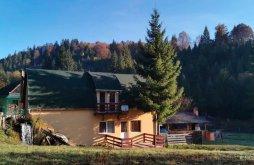 Cazare Pârtie de schi Vărșag cu wellness, Casa de oaspeţi Vízimalom