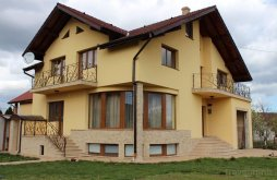 Vilă județul Alba, Vila Alba Guest Residence