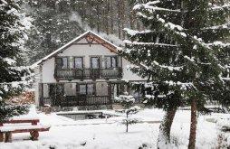 Accommodation Dorna-Arini, La Izvorul Giumalăului Chalet