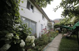 Guesthouse Caraș-Severin county, Anadam Guesthouse