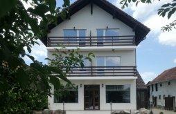 Accommodation Feldioara, Marienburg Guesthouse