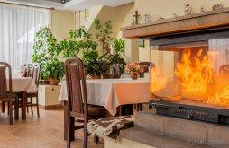 Accommodation Borcut, Ana Guesthouse