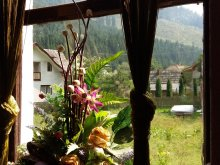 Accommodation Chirițeni, Brădet Guesthouse