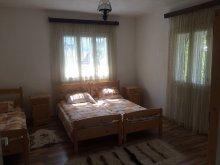 Casă de vacanță Mustești, Casa de vacanță Joldes