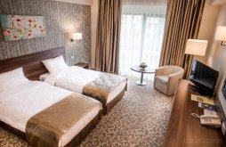 Hotel near Palace of A.I. Cuza from Ruginoasa, Arnia Hotel
