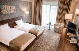 Hotel Scoposeni (Horlești), Hotel Arnia