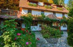 Villa Szent Anna-tó közelében, Sólyom Villa