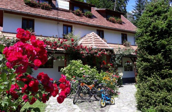 Sólyom Villa Tusnádfürdő