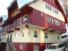 Accommodation Dealu Doștatului, Tichet de vacanță, MDM Vila