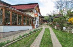 Apartman Borsabánya (Băile Borșa), Nagy Panzió és Étterem
