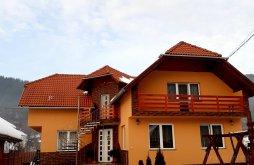 Accommodation Praid, Cristian Guesthouse