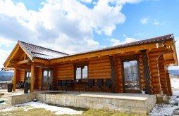 Chalet near Agapia Monastery, Nemtisor Chalet