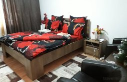 Cazare Podolenii de Sus, Apartament Irina