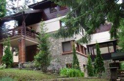 Villa near Peleș Castle, Harmony Villa