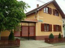 Accommodation Slatina de Criș, Boros Guesthouse