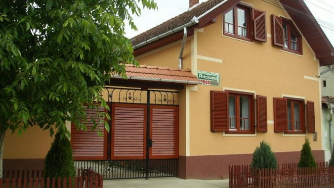 Boros Guesthouse Finiș