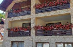 Accommodation Șinca Nouă, Popa Guesthouse
