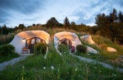 Accommodation Chirpăr, Dealul Verde Guesthouse