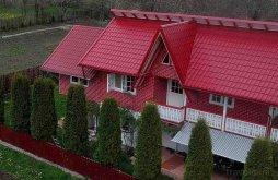 Accommodation Brebu Mânăstirei, Ștefania Guesthouse