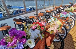 Hotel Frecăței, Hotel MS DIANA - Nava Croaziera Delta Dunarii
