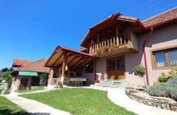 Casă de vacanță Turcești, Casa Darius