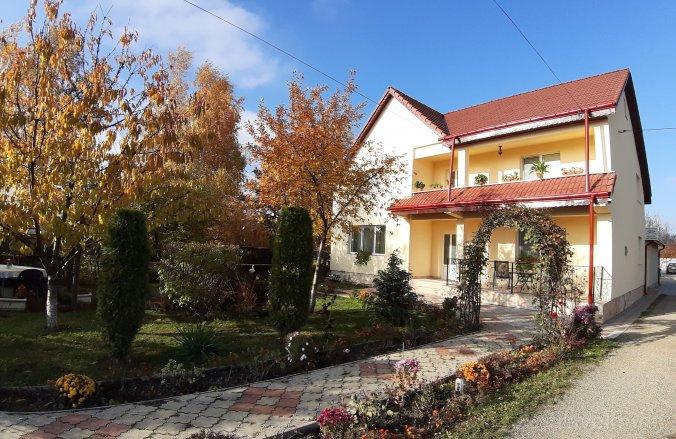 Steaua Nordului Panzió Németvásár