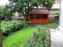 Accommodation Sânsimion, Petres Guesthouse