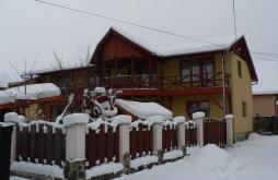 Accommodation Praid, Éden Guesthouse