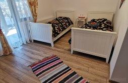 Accommodation Băile Borșa, Firuța Guesthouse