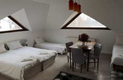 Accommodation Háromszék, Sepsi Relax Guesthouse