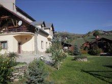 Accommodation Cajvana, Anastasia Guesthouse