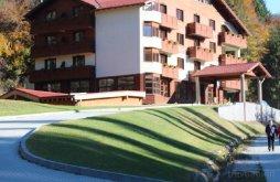 Hotel Coza, Hotel Monte Cervo Spirit and SPA