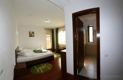 Accommodation Jiblea Veche, Maria B&B