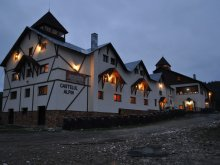 Accommodation Săldăbagiu de Barcău, Castelul Alpin Guesthouse