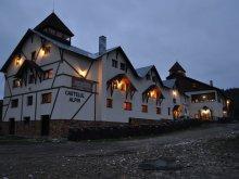 Cazare Lunca Vesești, Pensiunea Castelul Alpin
